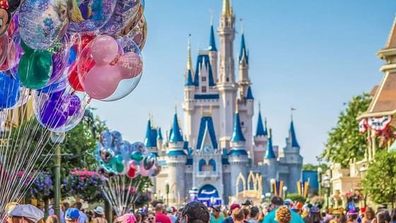 choose your favorites in the place where dreams come true :)