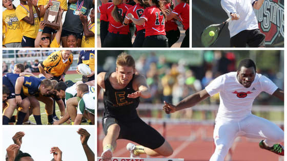 See if you can answer all of the questions correctly related to last year's spring sports state champions from Northeast Ohio.