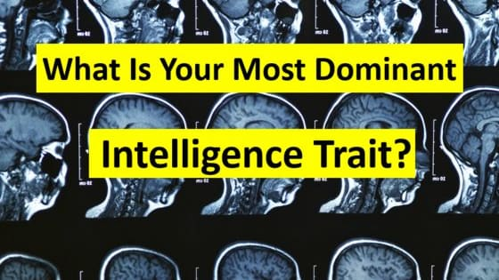 What unique style of intelligence do you actually possess?