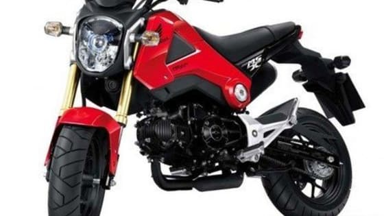 Choose the best answer or picture that best describes you to find out what type of Grom/MSX125 owner are you!