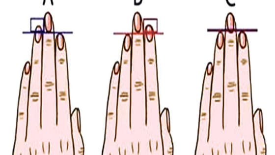 Who would have thought you could learn so much about yourself based on your finger length? Above you'll see three different hands labeled A, B, and C.  With each one, the ring, middle and index finger are different (or sometimes the same) lengths. Put your left hand up and find the one that most closely matches you.