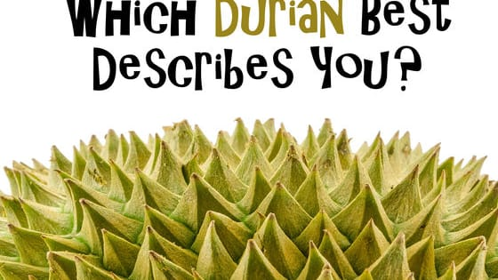 Singapore may not have the four seasons like Europe does, but we do have something even better; durian season!   It's upon us once again, and with more people having developed a discerning palate for the type of durian they most enjoy, foodpanda has decided to come up with a short quiz to see which durian type best reflects you.   Could you be sweet and lovable like the Red Prawn or do you have a caustic sense of humour that only a few close friends can appreciate?   Take our fun quiz to find out!