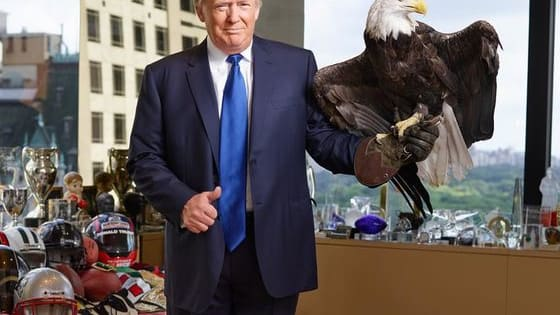 The Bald Eagle's name is Uncle Sam.
