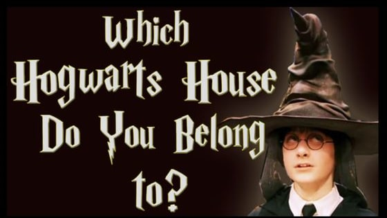 Answer a few short questions and discover where you belong in the wizarding world's most prestigious school!
