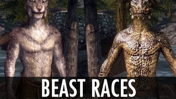 There are many interesting races in the Elder Scrolls series.  Beastfolk being some of the more odd looking and making up about 18% of Tameriel's population.