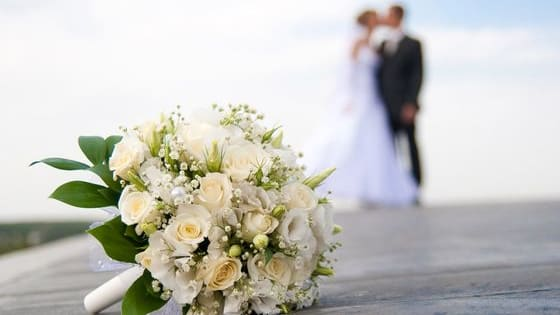 Take this quiz to figure out what type of wedding you and your fiance should have!