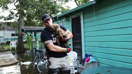 From PETA members to pet owners to incredible volunteers, many are pitching in to try and make sure no helpless animal gets left behind in the floodwaters of the hurricane's aftermath. You can see the monumental efforts here.