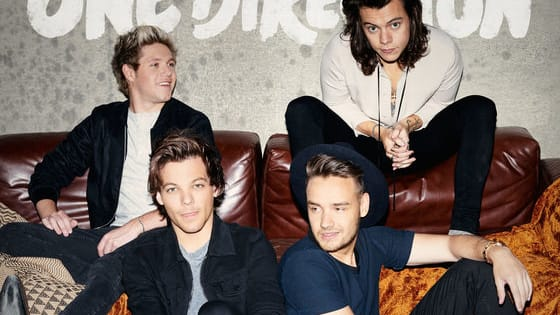 One Direction's Made in the A.M. was packed with hits, but with so many to choose from, it can be hard to say which is your fave. Take this quiz to find out which track best suits you!