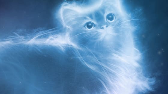 The 'official' quiz told you that your Patronus was something rubbish like a wet dog or a sewer rat or something - but we know that's not really you.   Find out what your real Patronus is!