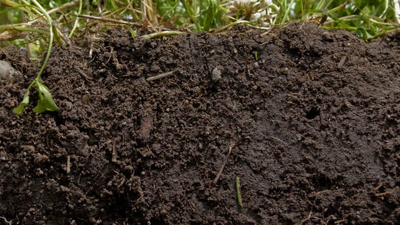 To meet the target for 20% more soil organic matter (SOM) in the next 20 years, the Soil Association has set out seven key areas .