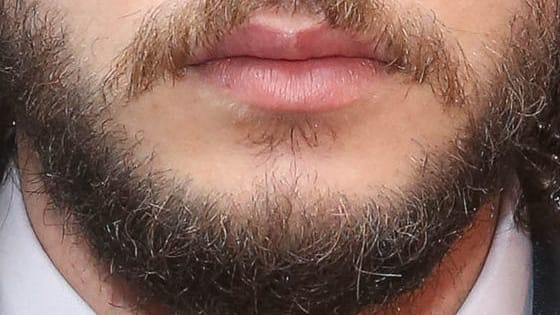 Play our quiz and see if you can match the star to their budding beards below.
