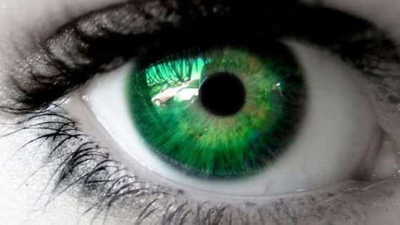 What eye color are you really supposed to have? Blue? Green? Brown? Take this quiz to find out! Hope you have fun taking it!👍🏻