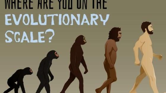 Are you a neanderthal or a modern homo sapien?