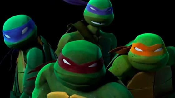 Donnie, the brainy one? Mikey, the party dude? Leo, the leader? Raph, the muscle? No obvious answers!! This quiz is based off of the 2012 series but applies to all generations! :) Enjoy and comment your result!