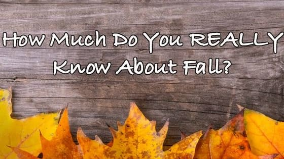 With fall now upon us, take this ultra-tough trivia quiz to discover how much you really know.