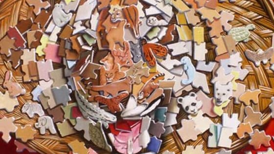 There is a Tiger hidden in these puzzle pieces. How fast can you find it? Have Fun!!!