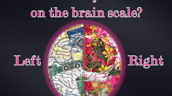 Brain lateralization has been a topic of discussion among scientists for centuries. Play to find out where exactly you land on the scale!