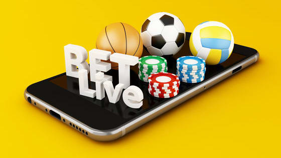 If you love sports and enjoy a little gambling now and then, sports betting might be a fun hobby for you. But how do you know what kind of bet and how to bet so the odds are in your favor? To help you get a leg up so you don't go into sports betting blindly, here are some tips to give you the odds of meeting lady luck.