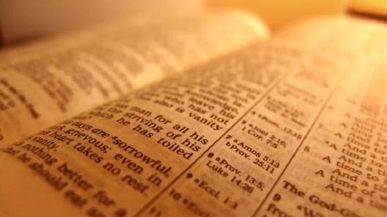 Take this quiz to see which Bible passage fits your personality.