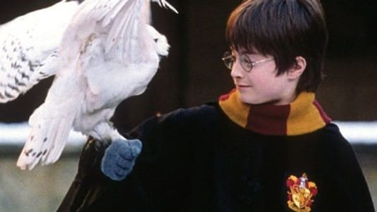 Why is Harry Potter an awesome character? Let's find out!