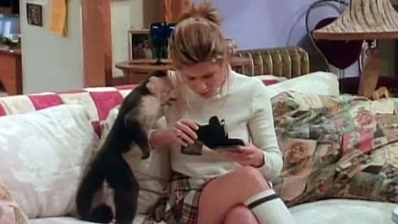 Take this personality quiz and discover which of the 'Friends' pets you are most like IRL.