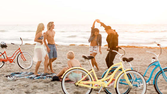 Find out what Schwinn bicycle represents your personality and why!