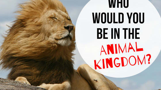 What role would you play among all animals.