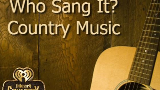 Here are some of the top country songs of 2015. Which can you match the lyrics with the song and artist?