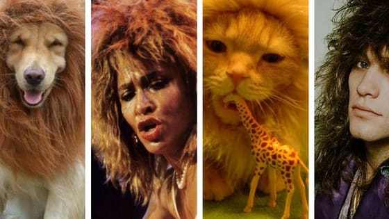 Who's the king/queen of the jungle?