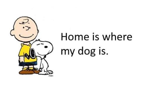 Or do you just like dogs?
