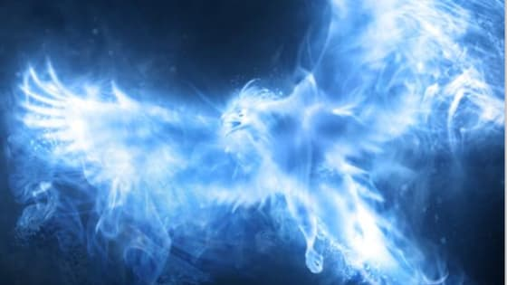 Find out your Harry Potter Patronus here!!!