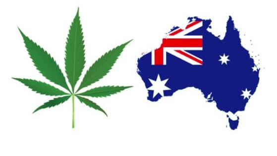 Do you want cannabis to be legalised?