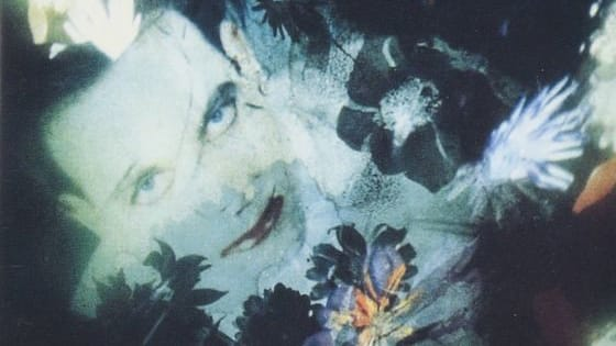 We'll give you one of The Cure's many studio albums, live LPs or compilations. BUT… we've obsCured (LOL) the title.