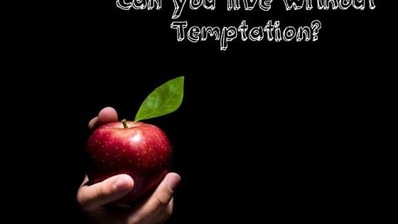 What are your greatest temptations and could you actually attempt to live without them in this life? How hard can you resist your desires?
