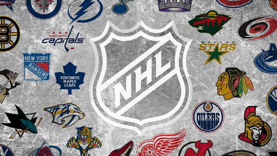 What Will Your Favourite NHL Team's Conference Rank Be During The 2015-2016 NHL Season? Will You Make The Playoffs? Answer Questions Accurately To Receive An Accurate Estimate! Comment where your team will rank!