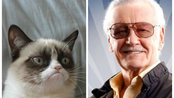 Stan Lee and Grumpy Cat both look like they're having the worst day ever, but this picture of the pair is 100% guaranteed to brighten yours!