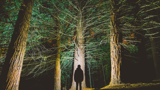 What do you fear more deeply than the darkness, or a horror film? Lets find out in these 5 short questions....