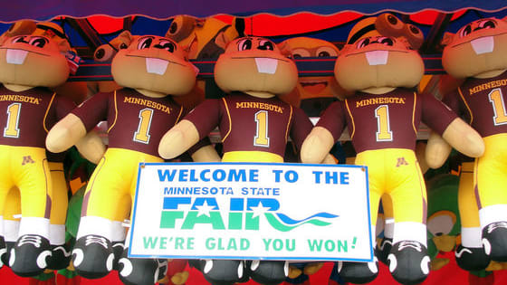 The Minnesota State Fair is upon us. Take our quiz to find the perfect list of events to suit your personality!