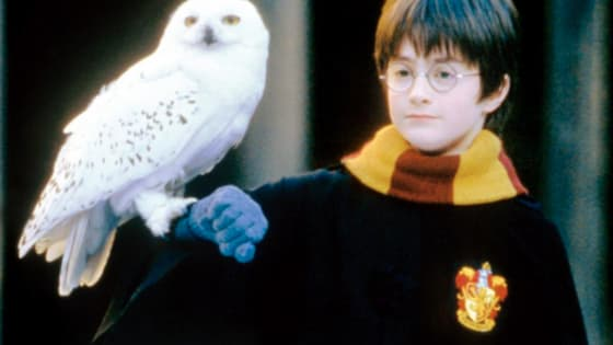 It's been 15 years since Dan, Emma and Rupert starred in their first film installment of the series. (Bloody hell!)