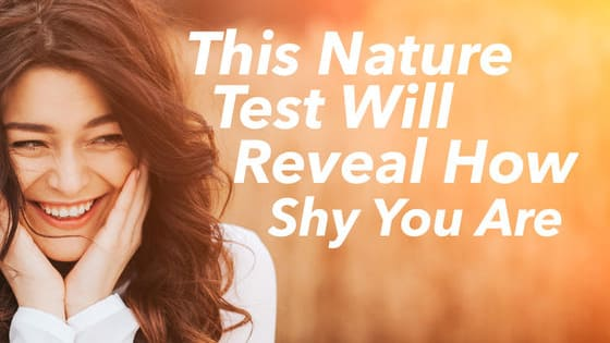 Shy people have an incredibly close connection to nature. It makes us feel calm, peaceful and centred. You may consider yourself shy, but based on your choices, how shy exactly are you? Take this quiz to find out!