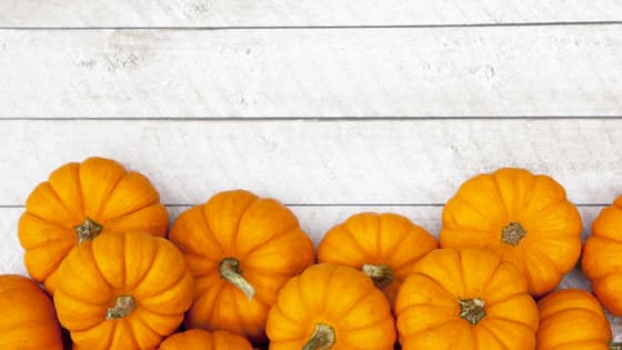'Tis the season for pumpkin spice. trazeetravel.com