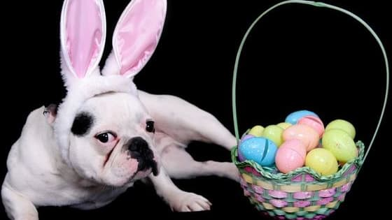 Easter is coming but do you know its origins? Here are 10 Fun Facts About Easter.