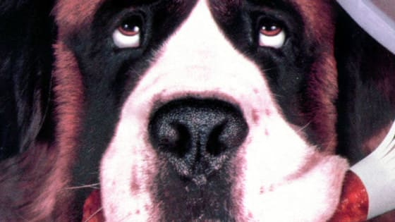 There is nothing quite like man's best friend to make a movie memorable!