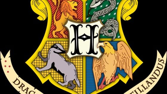 Vote for the house that the sorting hat would have chosen you to be in.