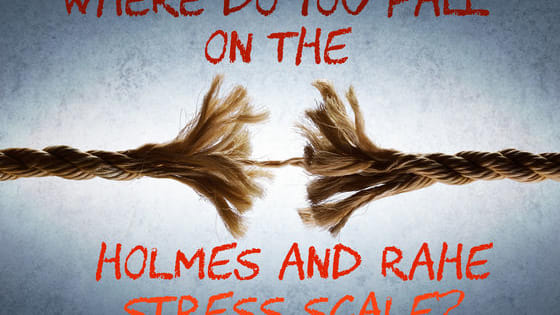 The most accurate measurement of lifestyle stress available. The scale runs from 1-300. Where do you fall?