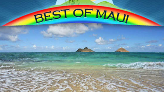 What kind of beach do you like best? An isolated beach? A beach with lots of water sports? A beach where you'll be pampered? Take this test and find out what beach in Maui is the best beach for you.