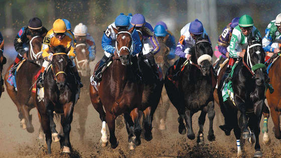 Put on your crazy hat, sip on a Mint Julep and find out how well you know the Kentucky Derby.