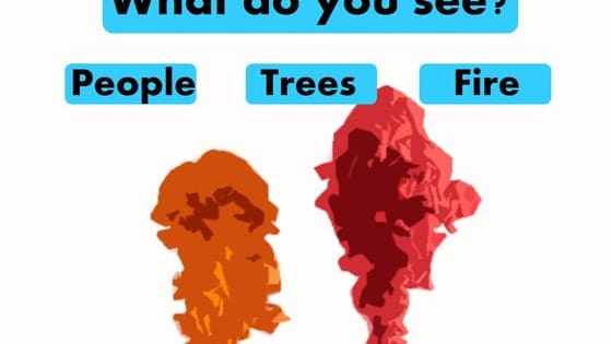 What age is your brain?