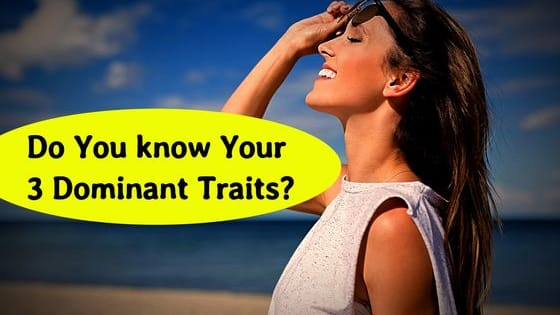 Your answers to 14 personality questions will unveil your 3 most dominant traits.