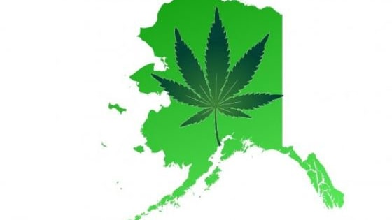 On Tuesday, Alaska became the third state in the U.S. to legalize possession, growth and consumption of marijuana.  Do you agree with this decision or do you think marijuana should remain illegal in the United States?